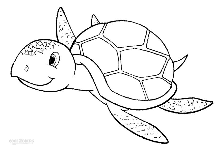 Beau Sea Turtle Coloring Pages For Kids