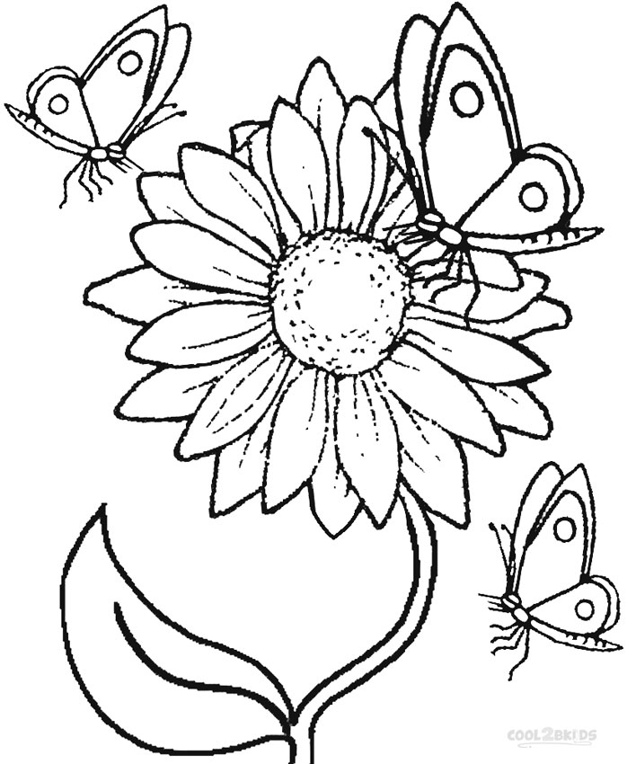 Sunflower - Free Colouring Pages