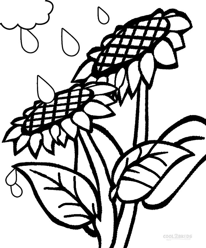 Printable Sunflower Coloring Pages For Kids Cool2bkids Coloring Pages Printable