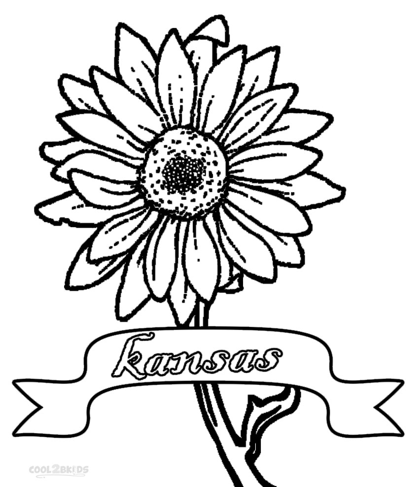 Coloring Pages Of Realistic Flowers
