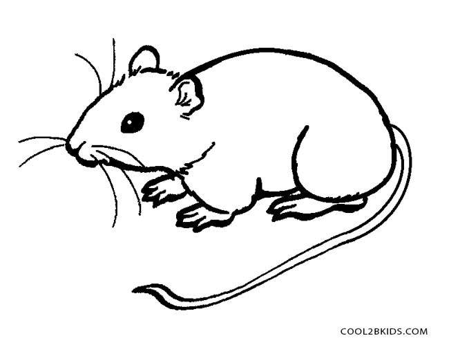 mouse coloring pages printable - Coloring Picture Of A Mouse
