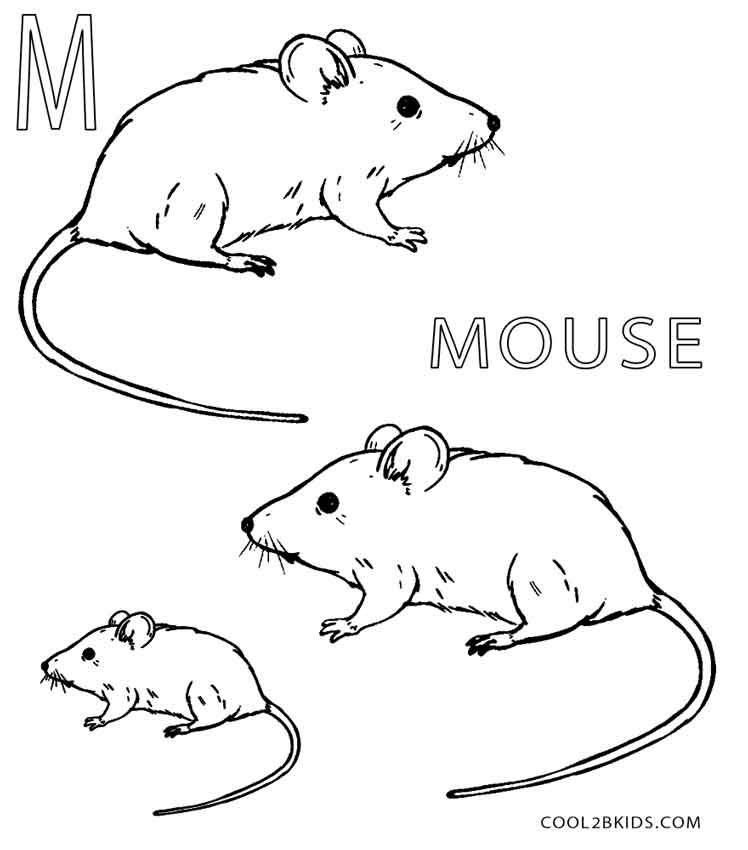 Coloring pages of a mouse ~ Printable Mouse Coloring Pages For Kids | Cool2bKids
