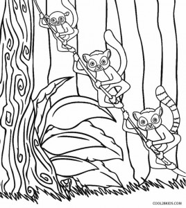 Madagascar Lemur Coloring Pages