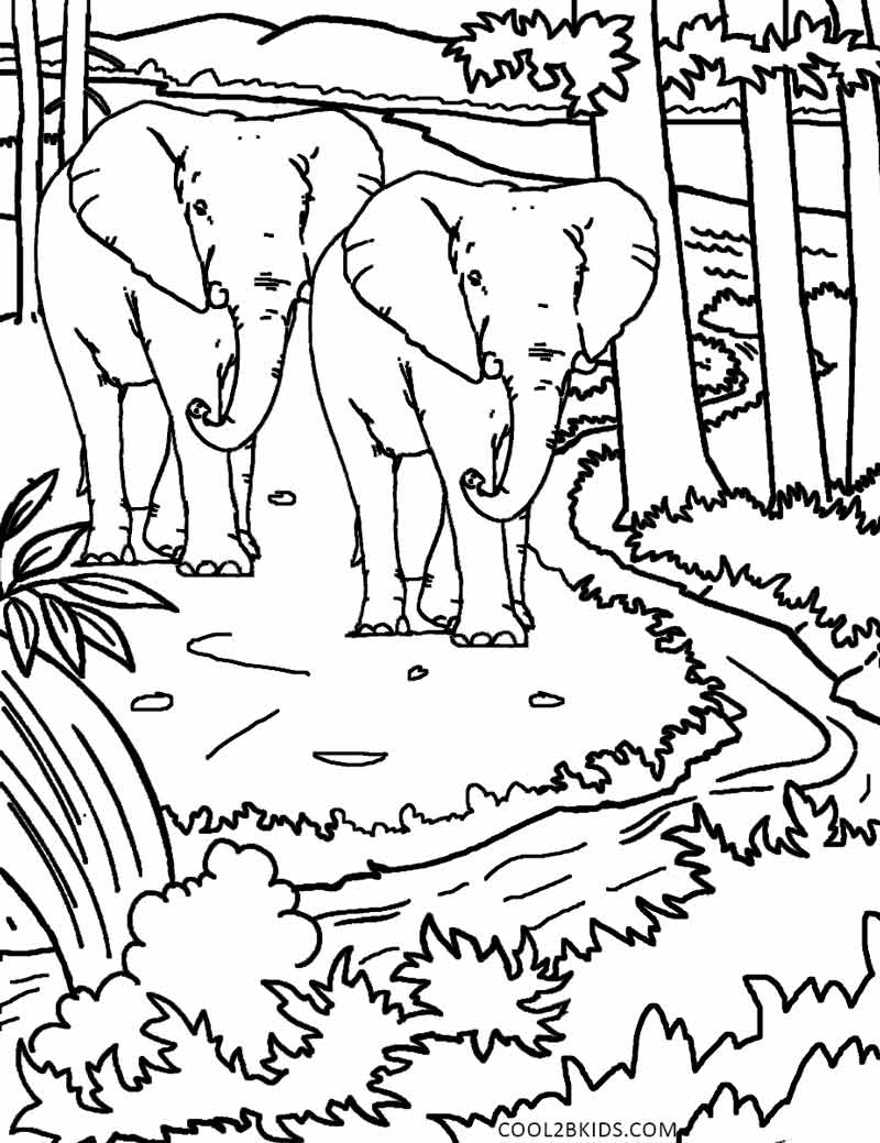 Drawing pages of nature - Coloring Pages Of Nature