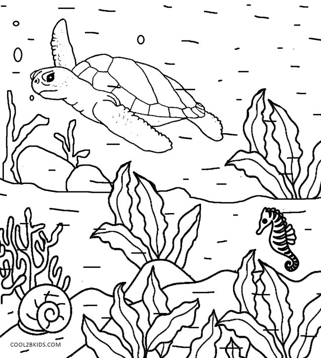 Printable Nature Coloring Pages For Kids Cool2bkids Print Coloring Pages