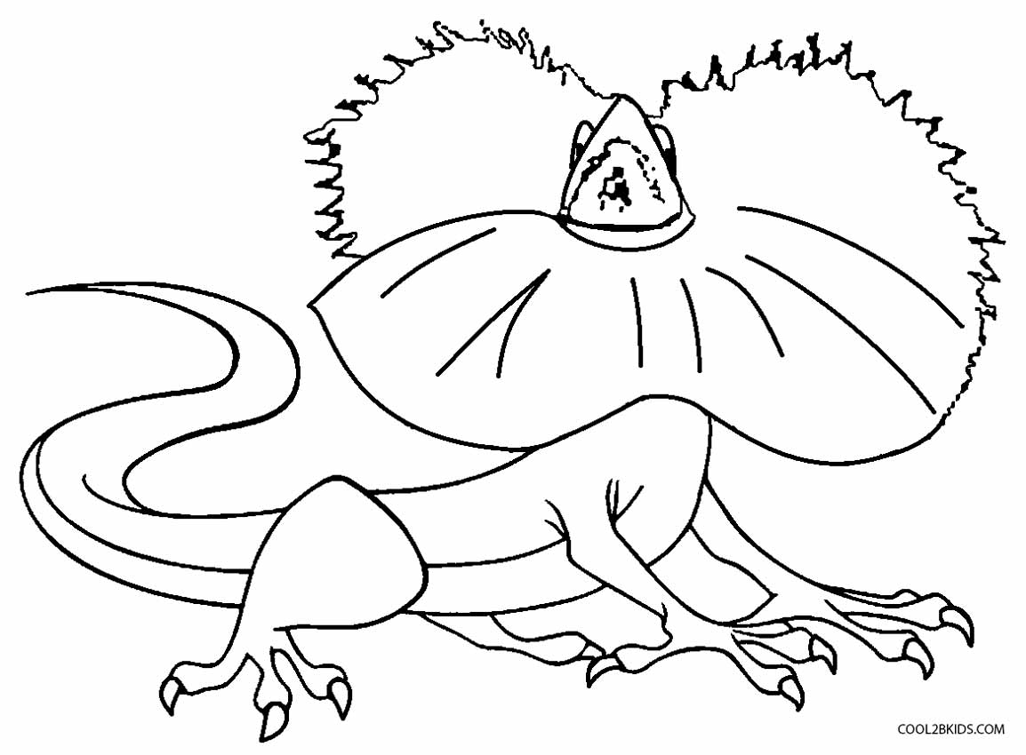Color crew printables - Frilled Lizard Coloring Pages