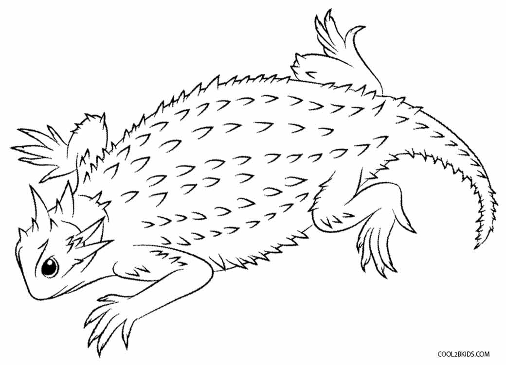 lizzard coloring pages-#23