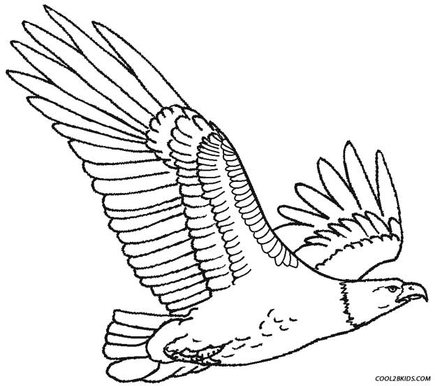 coloring pages of eagles - photo#14