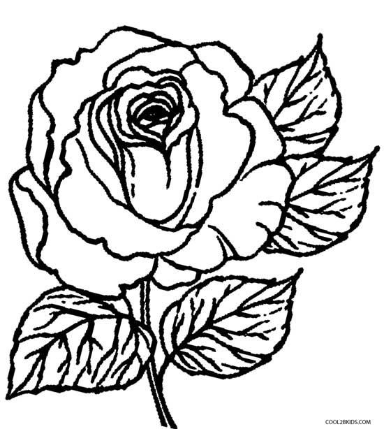 photo relating to Printable Rose identified as Printable Rose Coloring Web pages For Little ones Awesome2bKids