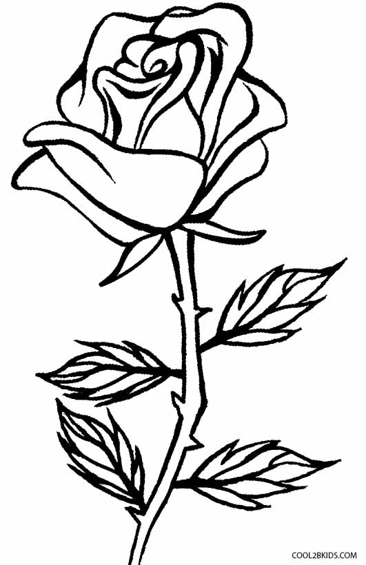 coloring book pages of roses - photo#12