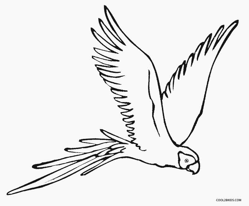 Merveilleux Flying Parrot Coloring Pages