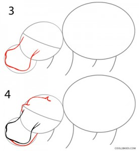 How to Draw a Hippo Step 2