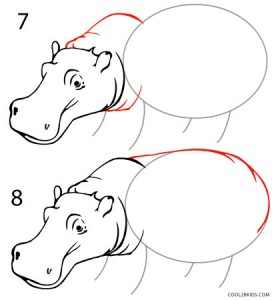 How to Draw a Hippo Step 4