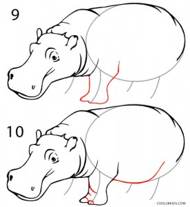 How to Draw a Hippo Step 5