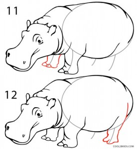 How to Draw a Hippo Step 6