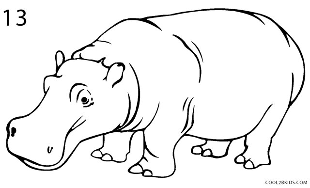 Line Art Hippo : How to draw a hippo step by pictures cool bkids