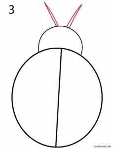 How to Draw a Ladybug Step 3