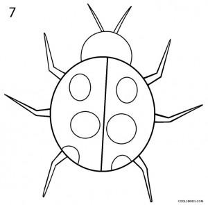 How to Draw a Ladybug Step 7