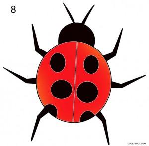How to Draw a Ladybug Step 8
