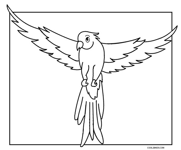 Exceptionnel Parrot Coloring Pages Printable