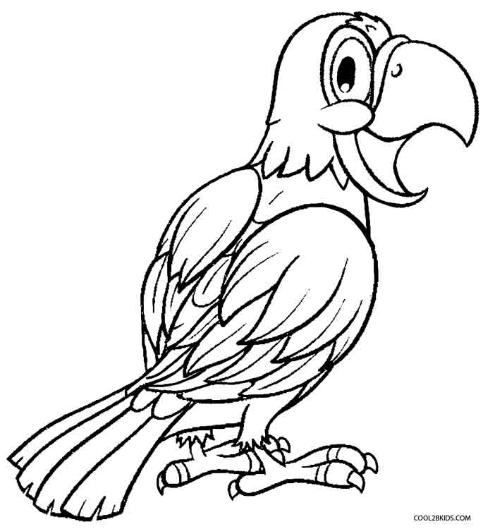 printable coloring pages parrots - photo#16