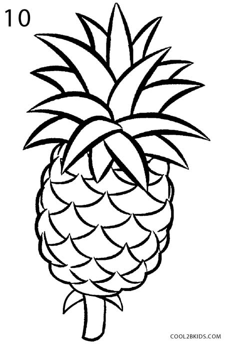 pineapple drawing. how to draw a pineapple step 10 drawing