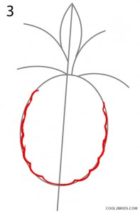 How to Draw a Pineapple Step 3