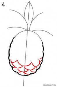 How to Draw a Pineapple Step 4