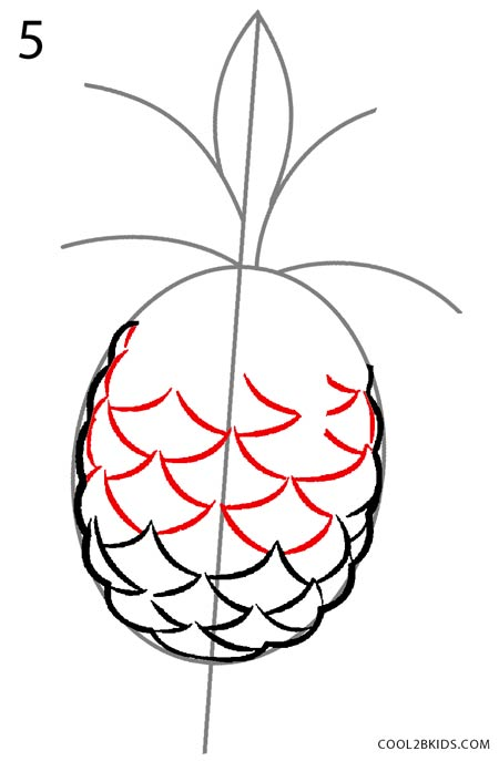 pineapple drawing. how to draw a pineapple step 5 drawing