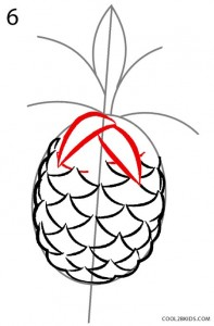 How to Draw a Pineapple Step 6