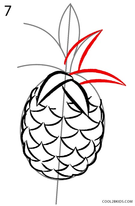 How to Draw a Pineapple (Step by Step Pictures) | Cool2bKids