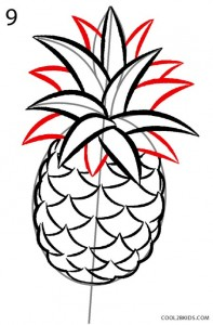 How to Draw a Pineapple Step 9
