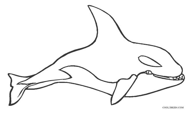 whale coloring book pages - photo#33