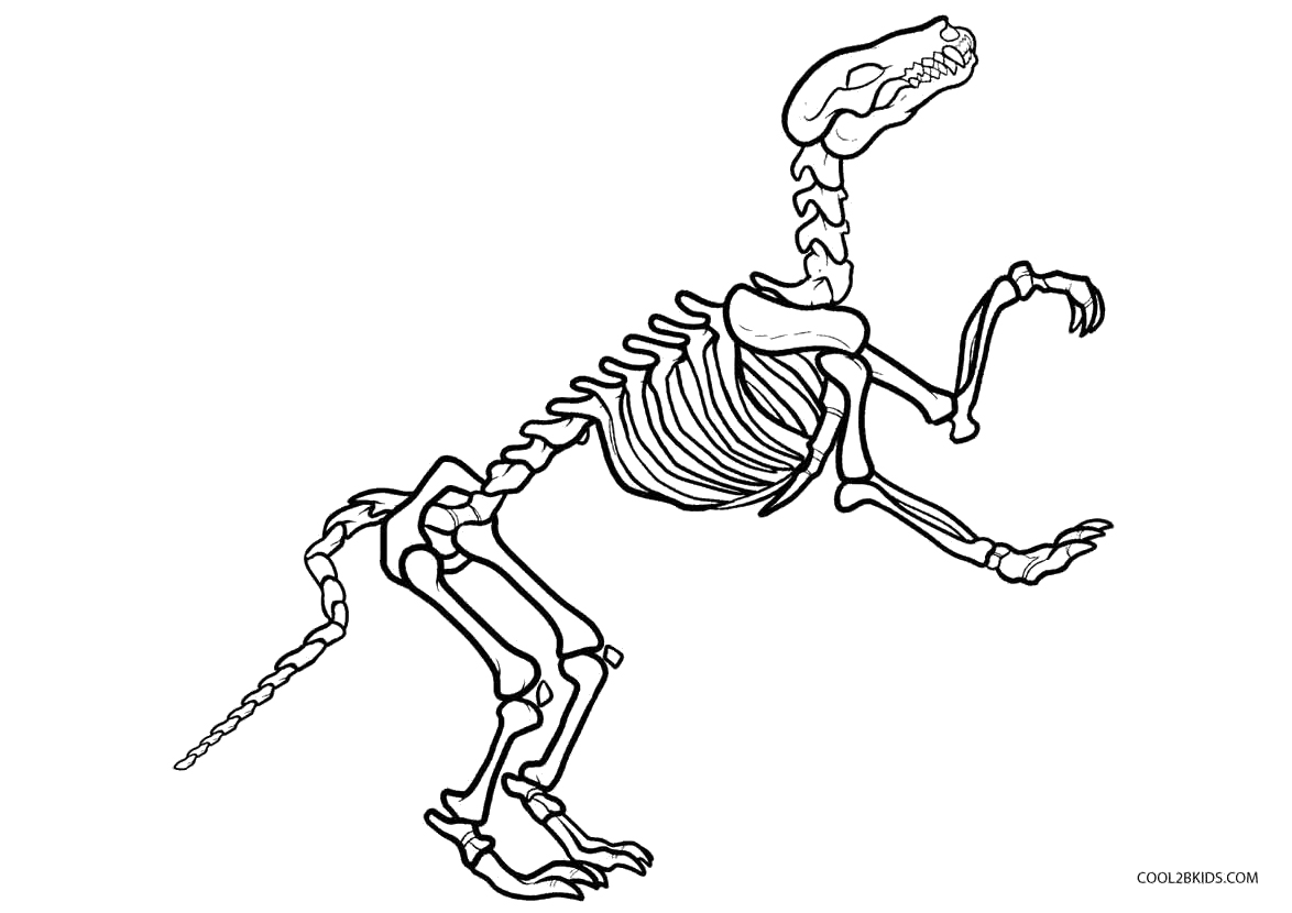 Dinosaur bones coloring pages free murderthestout for Printable dinosaur skeleton template