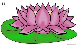 How to Draw Lotus Flower Step 11