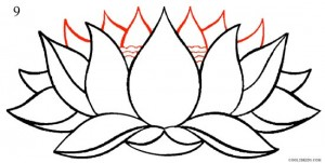 How to Draw Lotus Flower Step 9