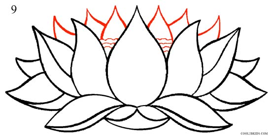 How to draw lotus flower step by step pictures cool2bkids how to draw lotus flower step 9 mightylinksfo