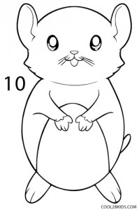 How to Draw a Hamster Step 10