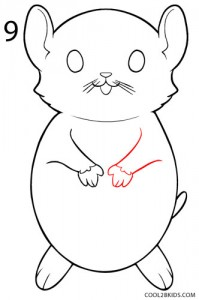 How to Draw a Hamster Step 9