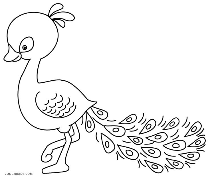 Baby peacock coloring pages