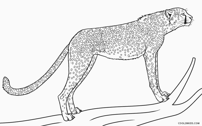 Printable Cheetah Coloring Pages For Kids | Cool2bKids