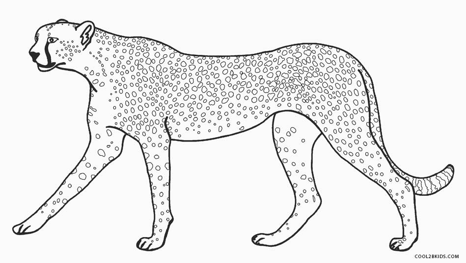 Printable Cheetah Coloring Pages