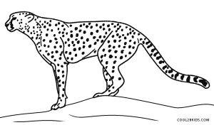 Cheetah Print Coloring Pages