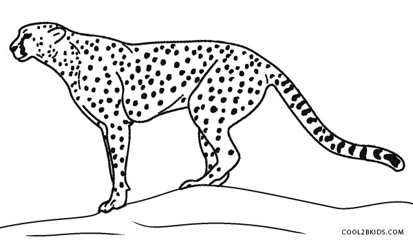 Cheetah Print Coloring Pages
