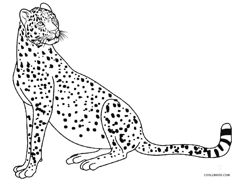 baby cheetah coloring pages - photo#50
