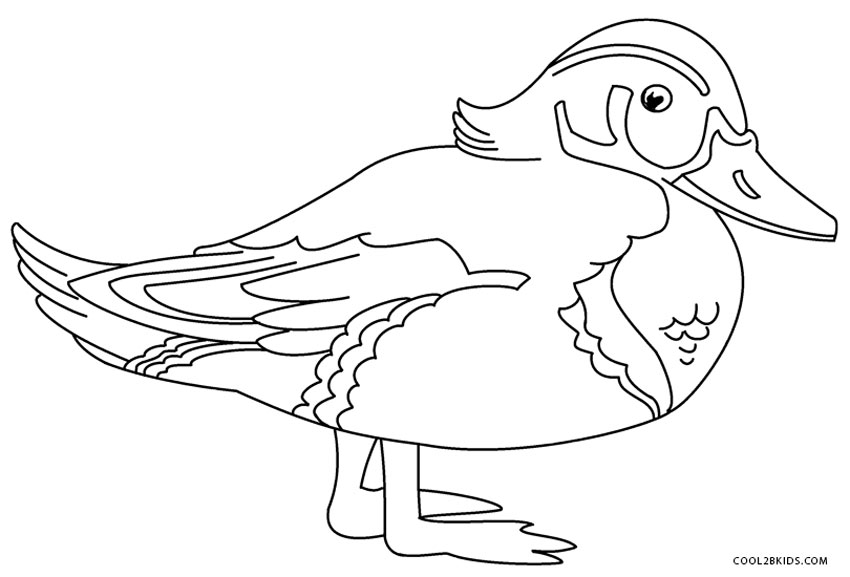 Simple Ducks Coloring Pages With Rubber Duck Coloring Pages