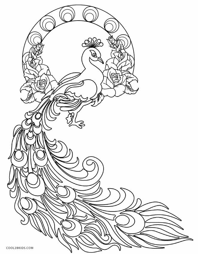 free printable peacock coloring pages for kids - Peacock Coloring Pages