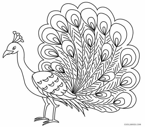 Printable Peacock Coloring Pages For Kids | Cool9bKids