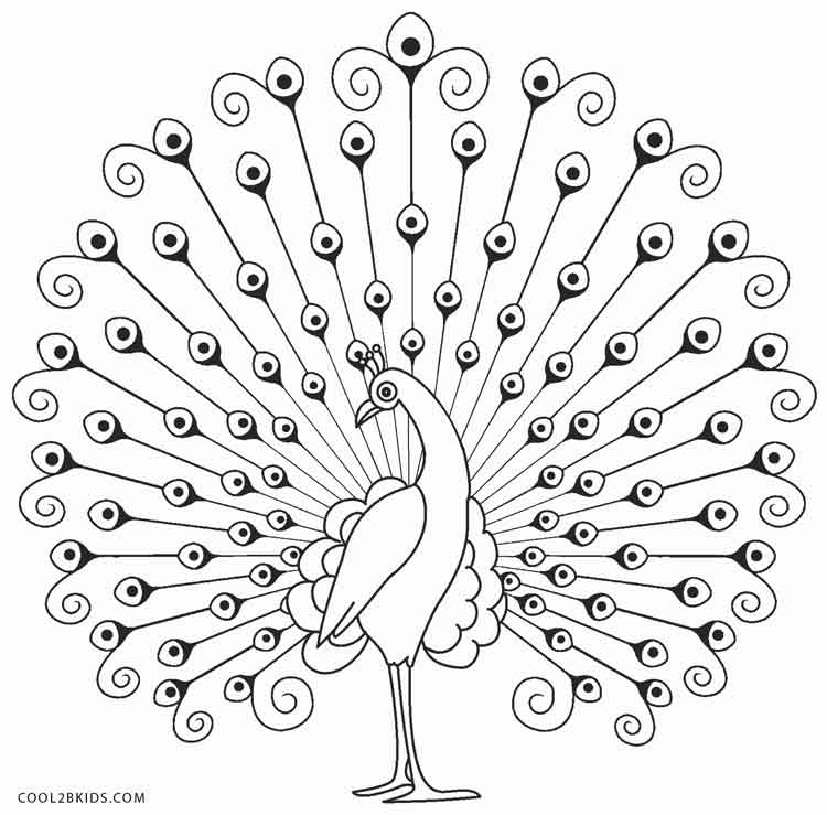 peacock coloring pages - Peacock Coloring Pages
