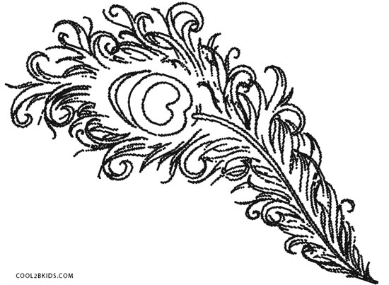 peacock feather coloring page - Coloring Page Printable